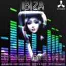Idriss Chebak - Your Groovy Baby (club Mix)