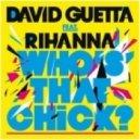 David Guetta - Who\'s That Chick (fmif Dub Remix)