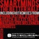 Smartminds  - The Better Half (Nic Lerner Remix)