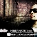 Hibernate - Exclamation - Original Mix