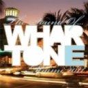 Warner Powers, Michael Paterson - Fiesta De Verano (Original Mix)