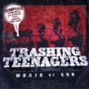 Trashing Teenagers - Wrath Of God (Trumpdisco Remix)