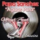 Papo Sanchez - Aguas Pura (Sir Piers & Ed Funks  Curious Beats)