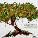 Moleman - Sinking