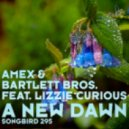 Amex & Bartlett Bros. feat Lizzie Curious - A New Dawn - Tempo Giusto Remix