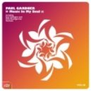 Paul Gardner - Music In My Soul (Felix Baumgartner Remix)