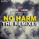 Basstiraden - No Harm (Feat. Brian Brainstorm)