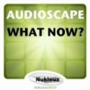 Audioscape - What Now? (P.H.A.T.T. Remix)