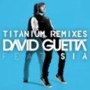 David Guetta feat. Sia  - Titanium (Cazzette\'s Ant Seeking Hamster Mix)