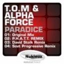 T.O.M. & Alpha Force - Paradice (Sovt progressive remix)