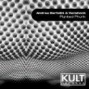 Andrea Bertolini & Vanshock - Plunked Phunk (Original Mix)