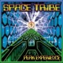 Space Tribe Vs Laughing Buddha - Gene Machine