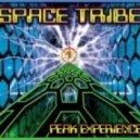 Space Tribe Vs Mad Maxx - Peak Experience (Kailash Rmx)