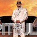RJ Feat Pitbull - U Know Ain't Love (David May Original Extended Mix)