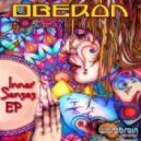 Erofex - The Right Choice (Oberon rmx)