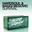 Hardsoul, Baggi Begovic - Survival (Amesz Melo House Rework)