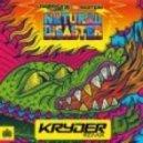 Laidback Luke vs Example - Natural Disaster (Kryder Remix)
