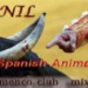 Dj Nil - Spanish Animals  2010 (Flamenco club mix )