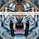 30 Seconds to Mars - Hurricane (Faster Than Light Dubstep Remix)