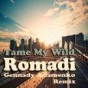 Ромади - Tame My Wild (Gennady Adamenko Extended Mix)