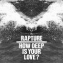 The Rapture - How Deep is your love (Irregular Disco Workers Remix)x)