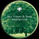 Sante and Alex Tepper - Put Your (Original Mix)