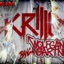 Skrillex & Wolfgang Gartner - Devil\'s Den (Redial\'s Drumstep Orgy Remix)