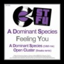 A Dominant Species - Feeling You (Open Cluster Breaks Remix)