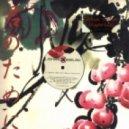 Johan Gielen - Magnitude (Fabian Steins Universal Journey Remix)