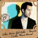 Calvin Harris ft. Kelis - Bounce (Sasha Flame Remix)