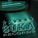 B.Vivant and DJ James Munich - You Bring Me Joy (Original Mix)