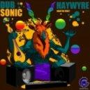 Haywyre - Aquatic Stimulation