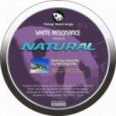 White Resonance - True Faith (Original Mix)