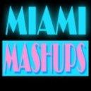 Misa_Zateinyk - Mashup Mix!