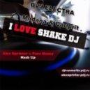 DVJ Electra vs. Modana & Carlprit - I love Shake DJ (Alex Sprinter & Pure Honey Mash Up)