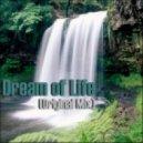Nikita Marasey - Dream of Life (Original Mix)