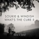 Soukie & Windish  - Whats The Cure (Original Mix)