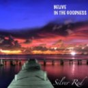 Silver Red - Believe in The Goodness (chillout mix) 2012-01-30