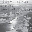 Bjorn Torske - Nitten Nitti (Harvey\'s Not Normal Mix)