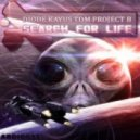 Project B - Warhawk