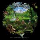 Dominik Eulberg - Taeuschungs-Blume (Original Mix)