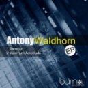 Antony Waldhorn - Maximum Amplitude (Original Mix)
