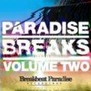 Breakbeat Junkie - Freak Hop Part 3