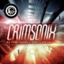 Crimsonix - In The Rain (Original Mix)