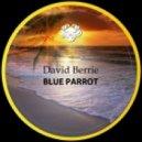 David Berrie - El Tipiko (Original Mix)