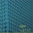 SayCeT - Opal