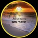 David Berrie - Getupp (Original Mix)