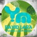 David Lara - Ain't Afraid (Original Mix)