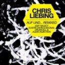 Chris Liebing - Auf und Ab (Drumcell  Audio Injection Noise Remix)