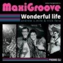 MaxiGroove - Wonderful Life (Dmitry South Remix)